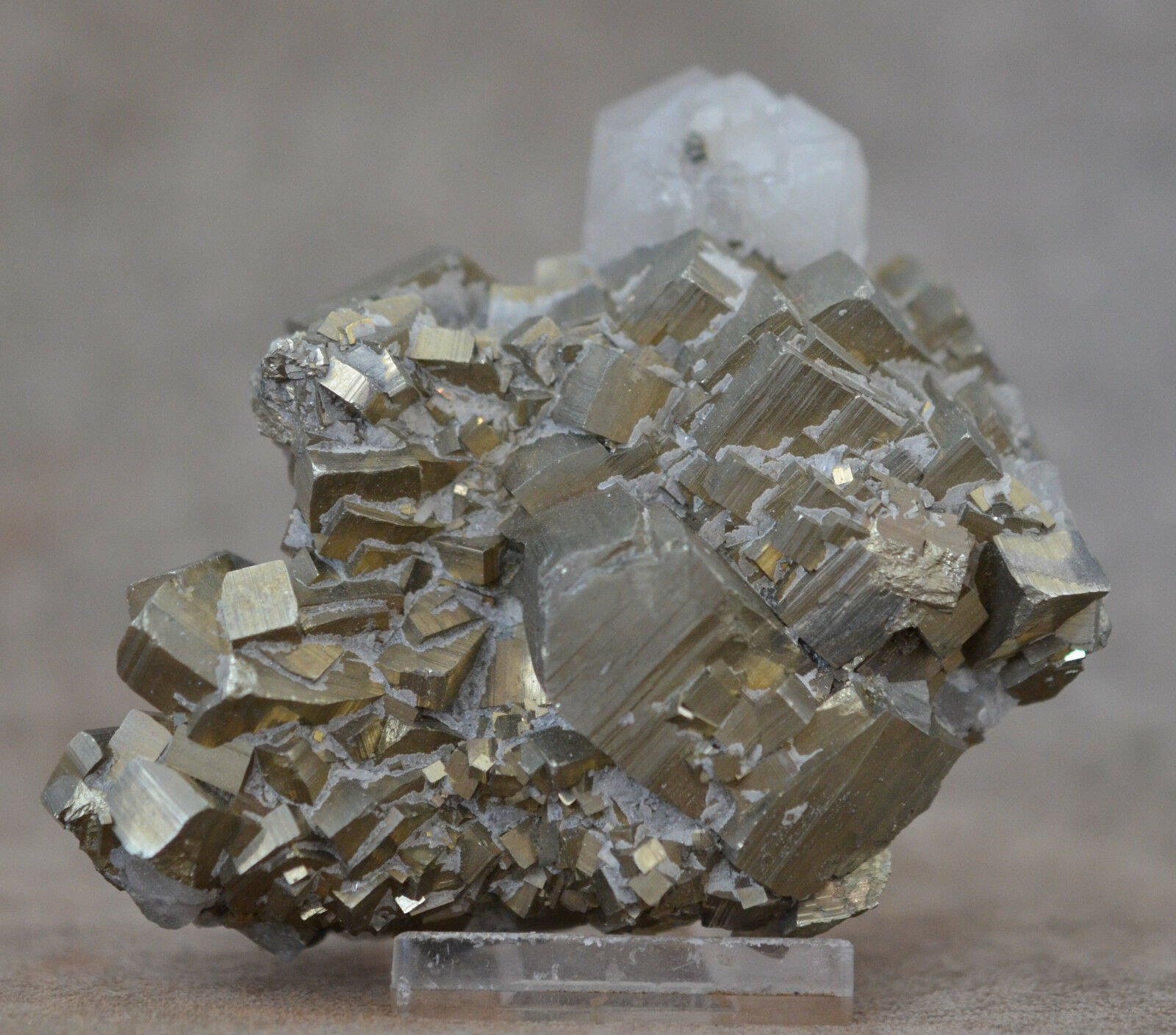 Gorgeous Quartz on Pyrite Crystal Specimen
